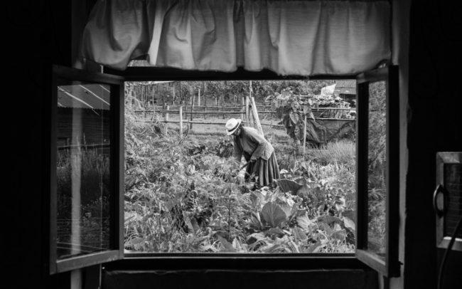 Women farm, Ecuador