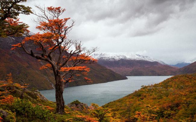 Fall-Desert-lake-Argentina-2012