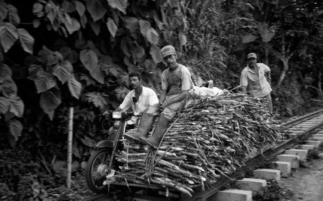 Sugar-cane-rider-Colombia-2010