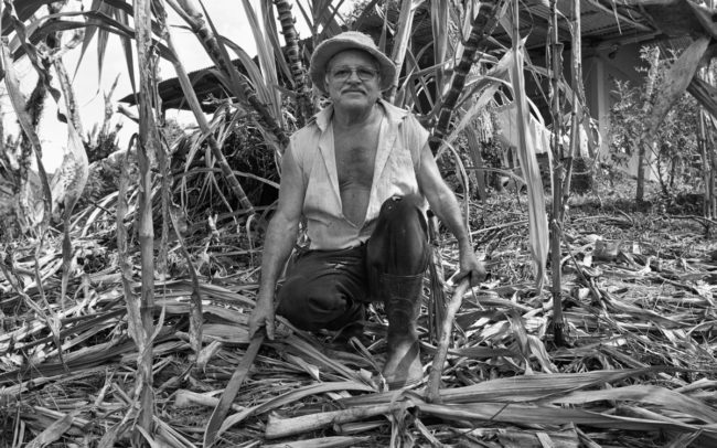Campesino working landowner's land, Costa Rica
