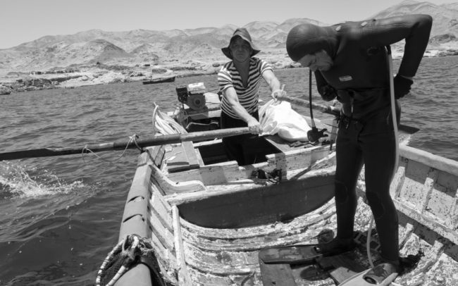 Artisanal fishermen, Atacama, Chile