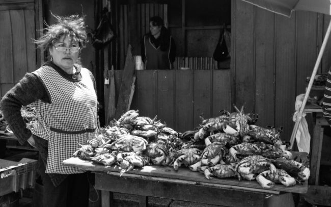 Fish seller in Concepción, Chile
